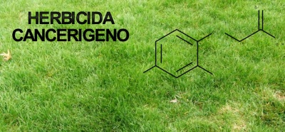 Uso do carcinogénico glifosato